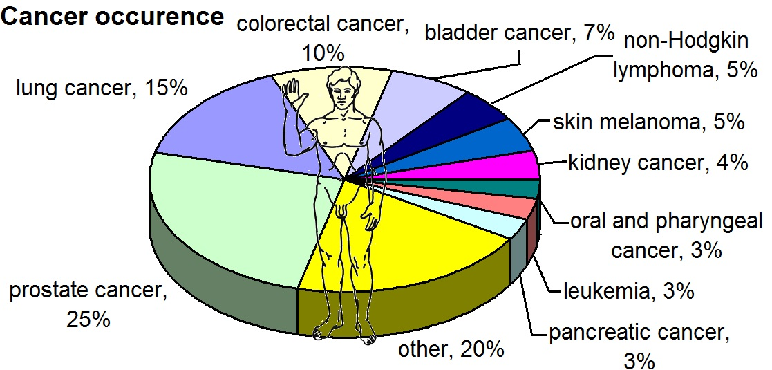 male-cancer-occur-rates.jpg
